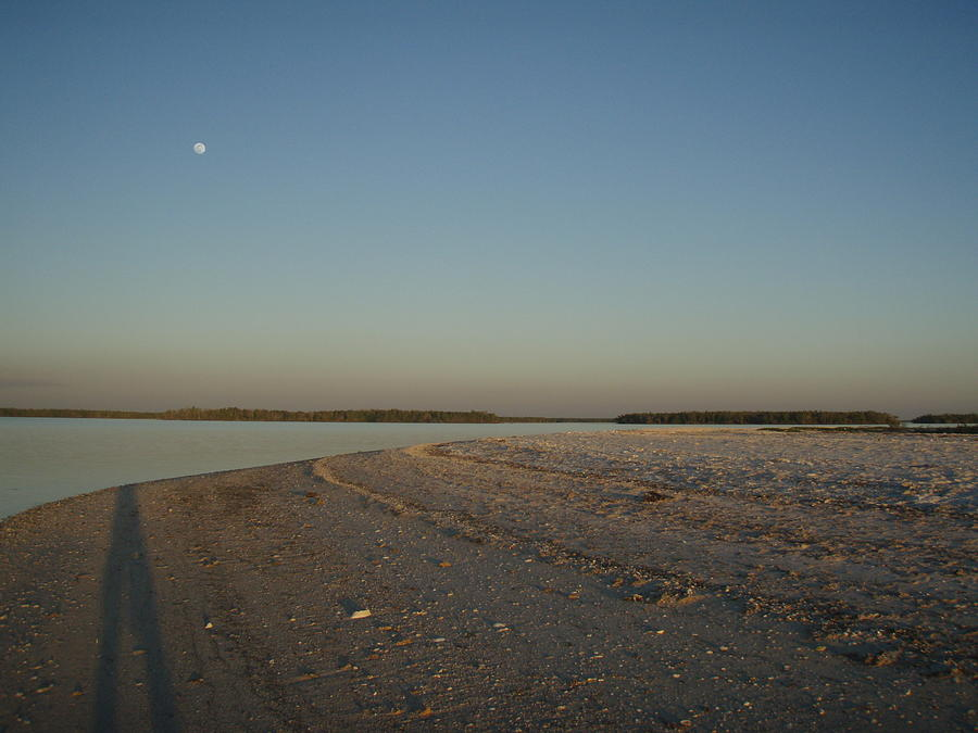Everglades Photograph - Shadow Moon by Robert Nickologianis