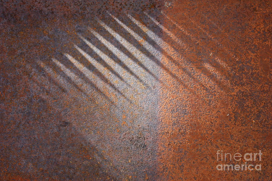 Rust Photograph - Shadows And Rust by Carol Groenen