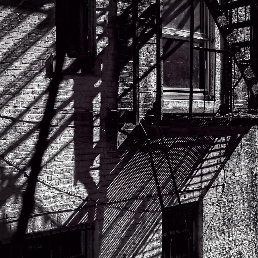 Shadow Photograph - Shadows by Bob Orsillo