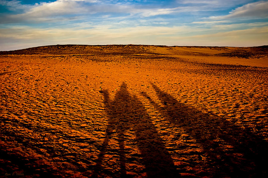 Egypt Photograph - Shadows On The Sahara by Mark E Tisdale