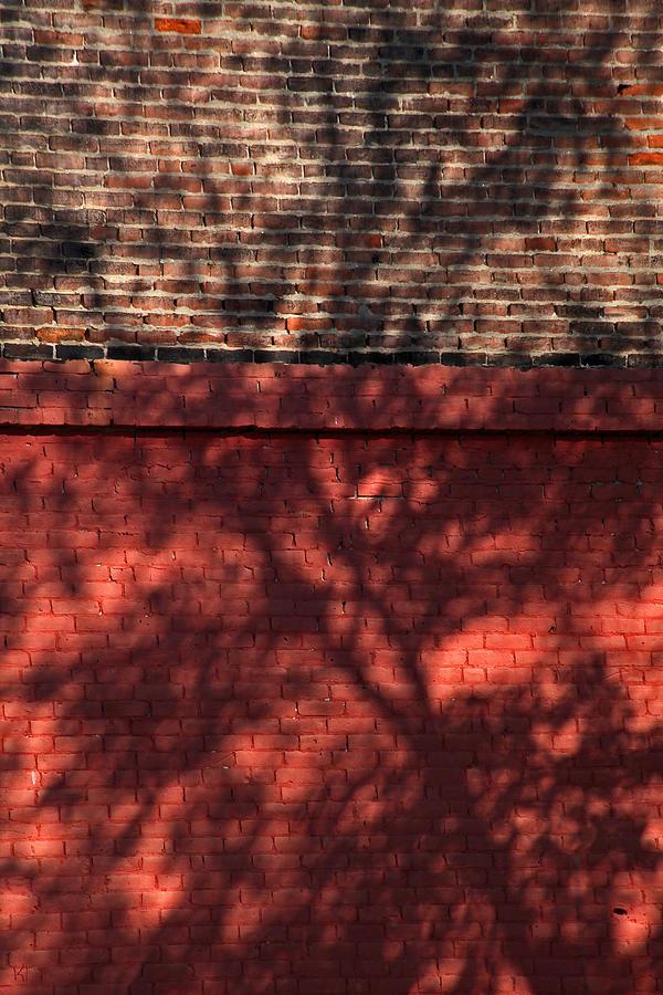 Shadows Photograph - Shadows On The Wall by Karol Livote