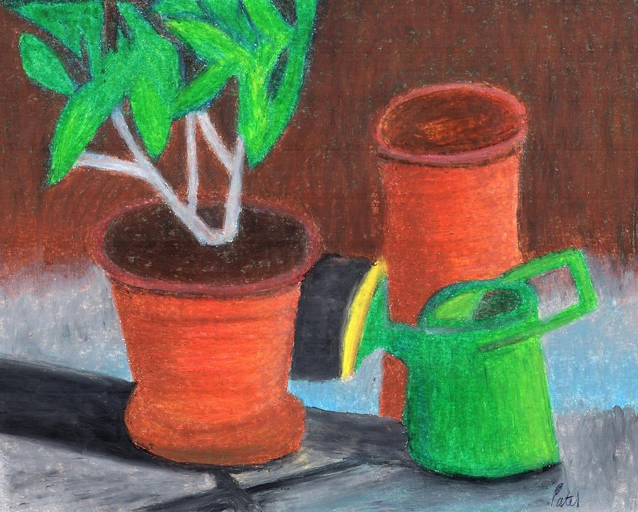 Garden Drawing - Shady Garden Corner by Bav Patel