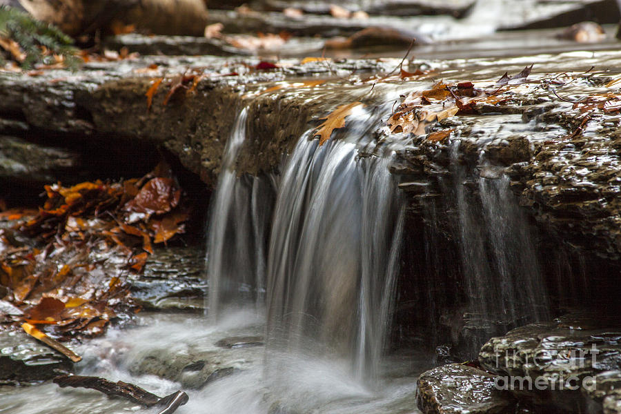 Waterfall Photograph - Shale Creek In Autumn by Darleen Stry