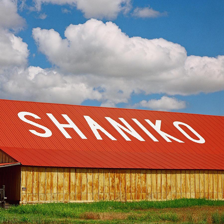 Shaniko Oregon Photograph - Shaniko Sky And Building by Thomas J Rhodes