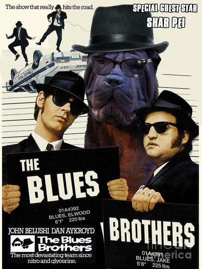 shar pei art canvas print the blues brothers movie