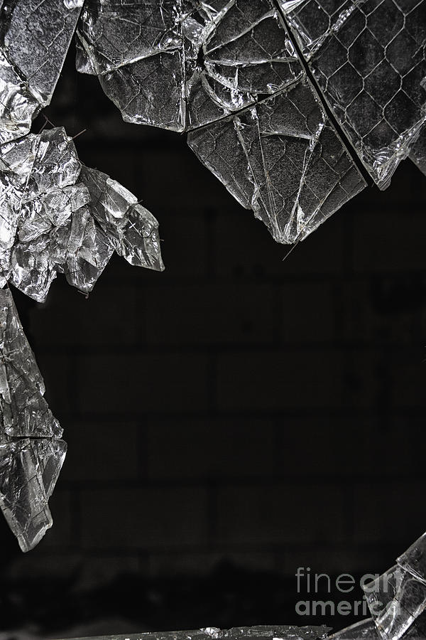 Glass Photograph - Shards by Margie Hurwich