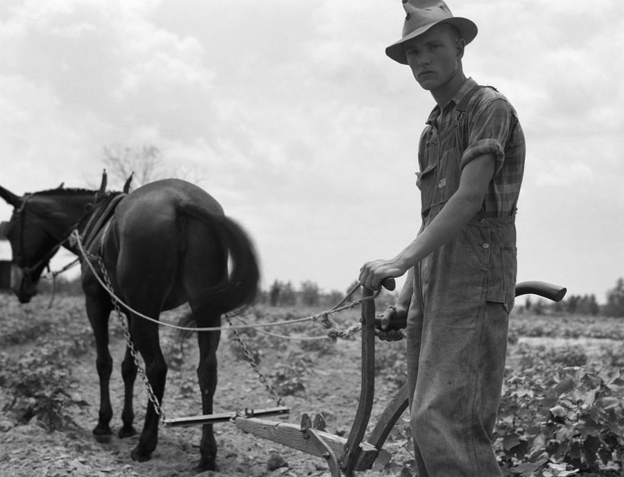 1937 Photograph - Sharecroppers Son, 1937 by Granger