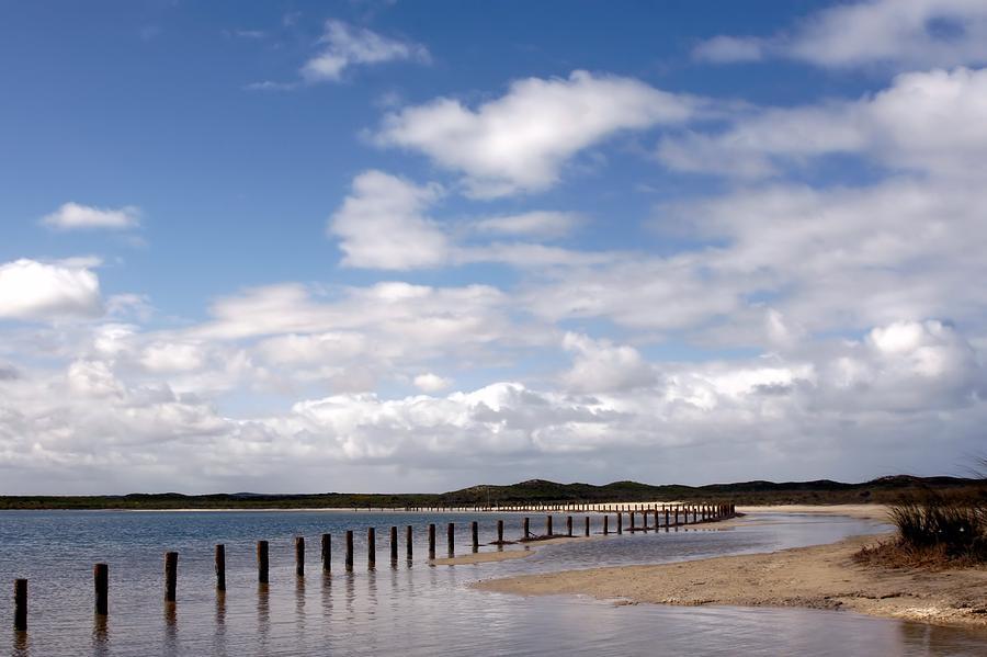 Shark Bay Western Australia by David Rich