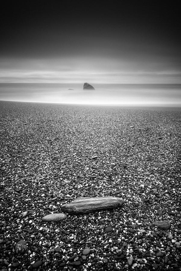 B&w Photograph - Shark Fin by Alexander Kunz