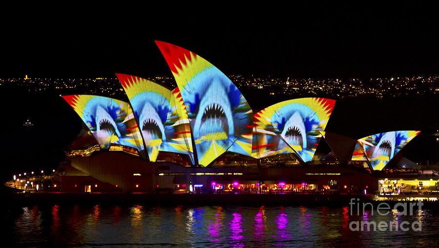 Sydney Photograph - Shark Sails by Bryan Freeman