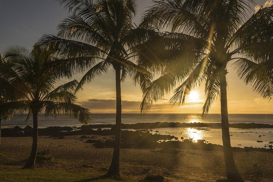 Oahu Photograph - Sharks Cove Sunset 2 - Oahu Hawaii by Brian Harig