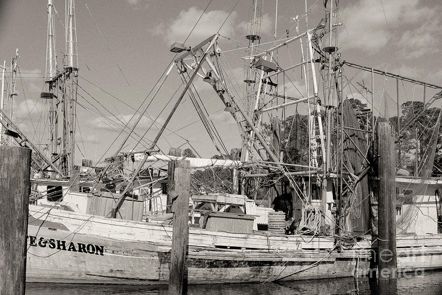 Shrimp Boat Photograph - Sharon by Russell Christie