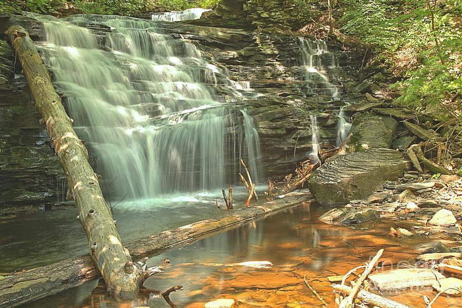 Shawnee Falls At Ricketts Glen Photograph by Adam Jewell