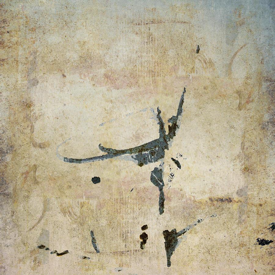 Flies Photograph - She Flies by Carol Leigh