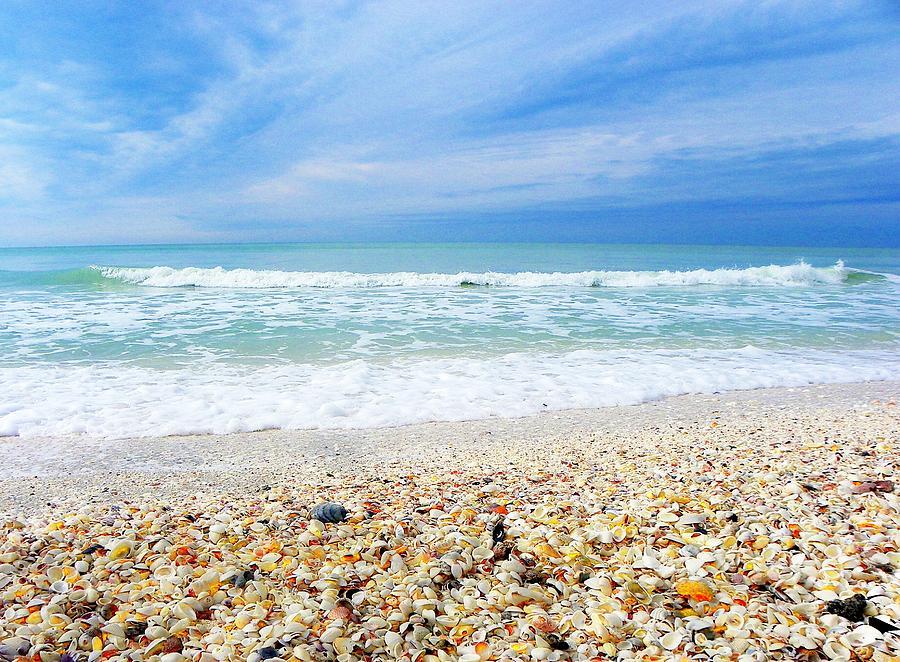 Beach Photograph - She Sells SeaShells... by Carolyn Bistline