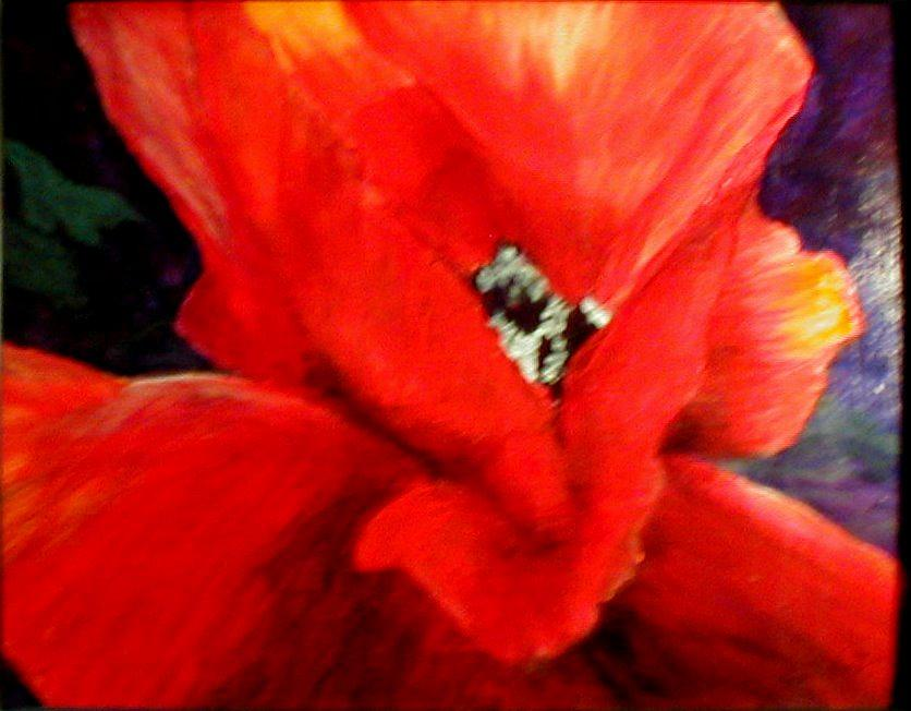 Floral Painting - She Wore Red Ruffles by Gail Kirtz