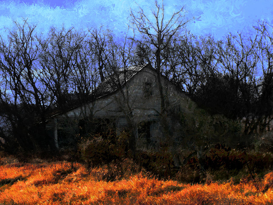 Shed Digital Art - Shed In Brush On Hwy 49 North Of Waupaca by David Blank