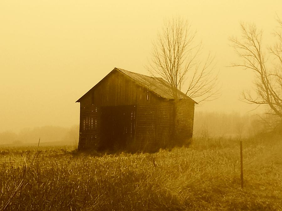 Barn Photograph - Shed In Field  by Michael L Kimble