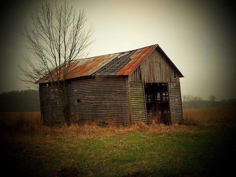 Shed Photograph - Shed In Pasture by Michael L Kimble