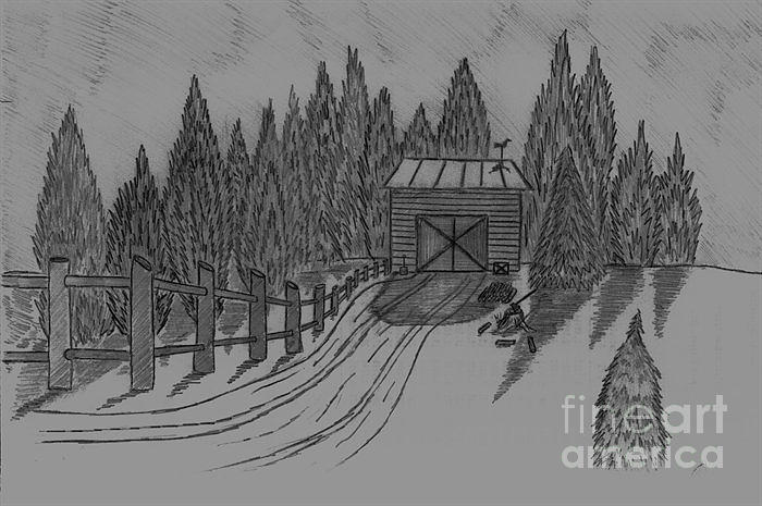 Sharp Shadows- Snow - Wood- Shed- Rooster Weather Vains-graphite Pencil Drawing - Shed In The Snow by Neil Stuart Coffey