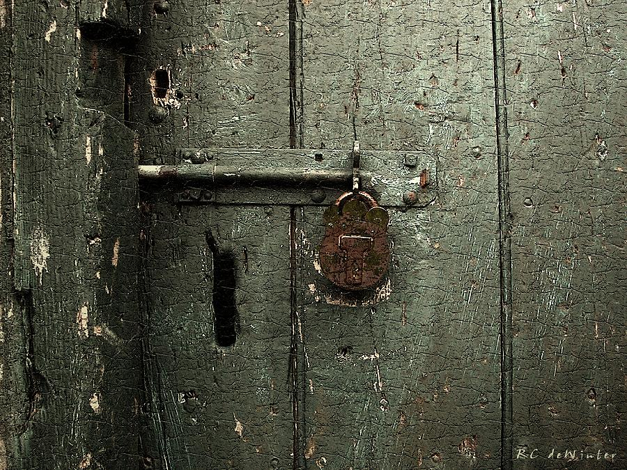 Door Painting - Shed Of Secrets by RC deWinter