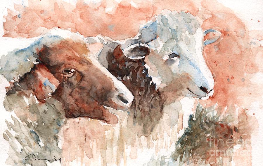 Sheep Painting - Sheep by Claudia Hafner