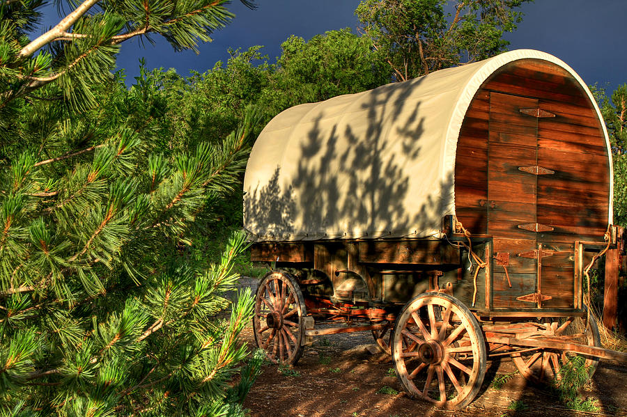 Covered Wagon Photograph - Sheep Herders Wagon by Donna Kennedy