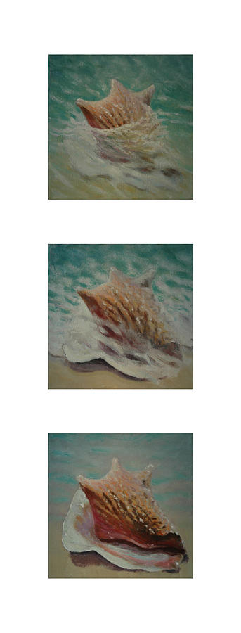 Set Painting - Shells Triptych 2 by Don Young