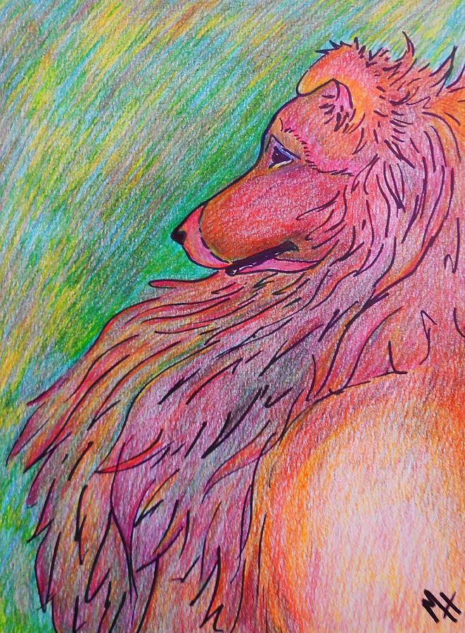 Sheltie Drawing - Sheltie by Megan Leppert
