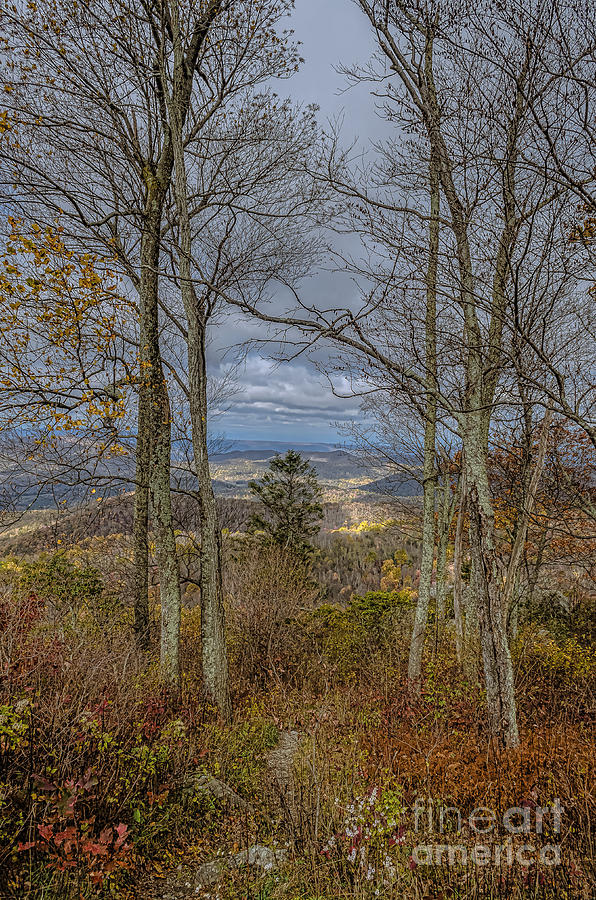 Autumn Photograph - Shenandoah Delight by Joe McCormack Jr