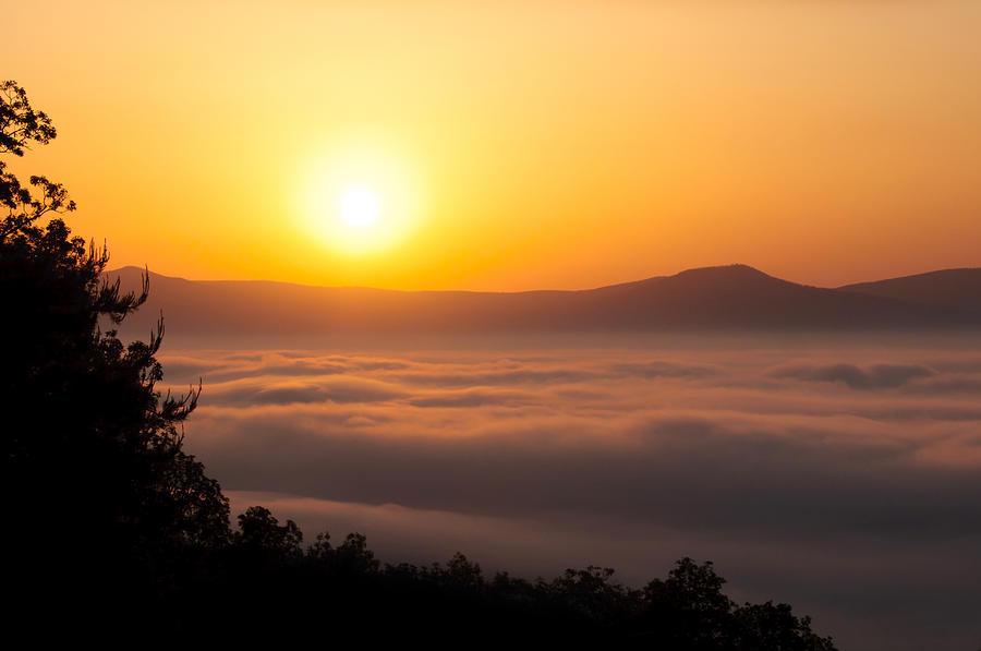 Landscape Photograph - Shenandoah Spring Sunrise by Lara Ellis