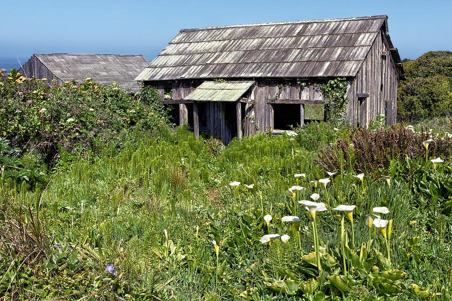Shepherd Photograph - Shepherds Cabin by Kathleen Bishop