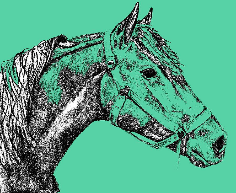 Horse Photograph - Sherman Greens by JAMART Photography