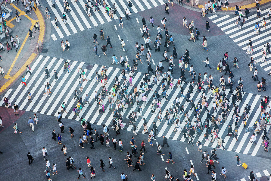 Shibuya Crossing Aerial Photograph by Davidf