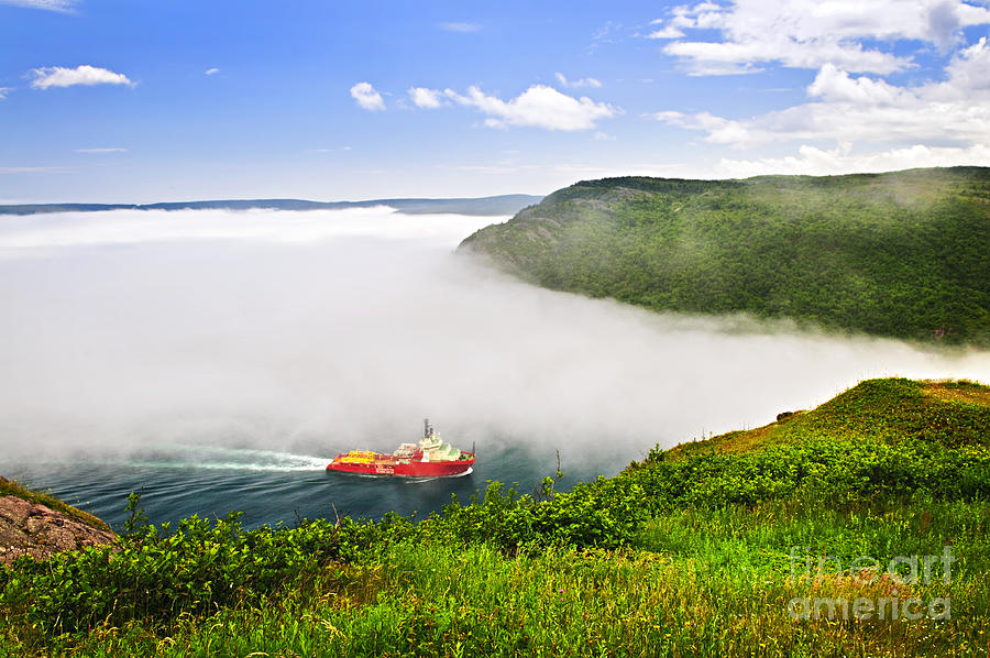 Ship Photograph - Ship Entering The Narrows Of St Johns by Elena Elisseeva