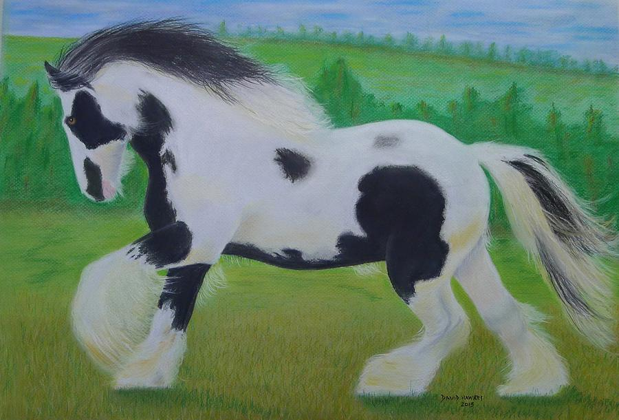 Shire Painting - Shire Horse by David Hawkes
