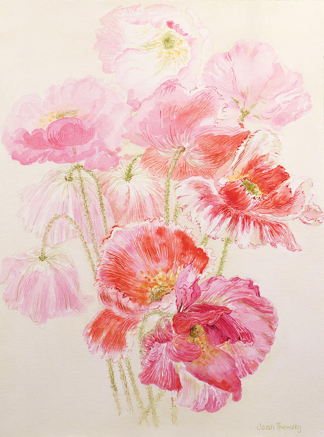Poppy Painting - Shirley Poppies by Joan Thewsey