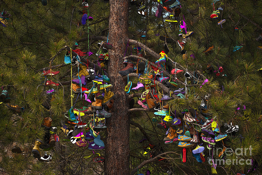 Shoe Shrine Photograph