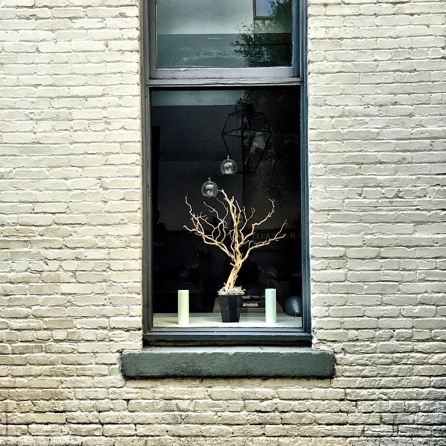 Window Photograph - Shop Window by Julie Gebhardt