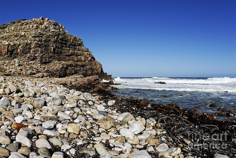 Absence Photograph - Shore At Cape Of Good Hope by Sami Sarkis