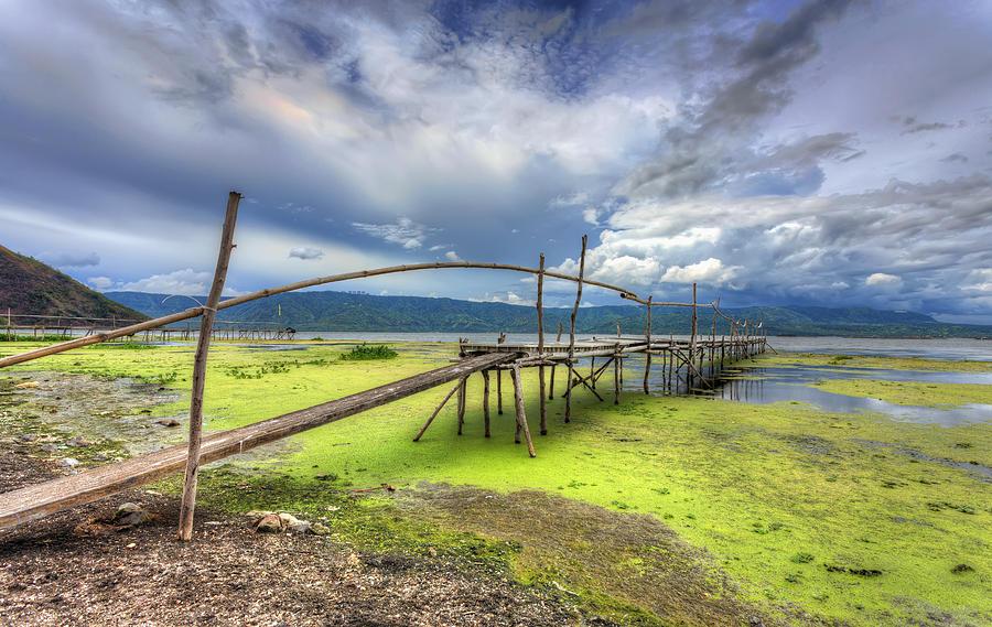 Taal Lake Photograph - Shore Vegetation by Mario Legaspi
