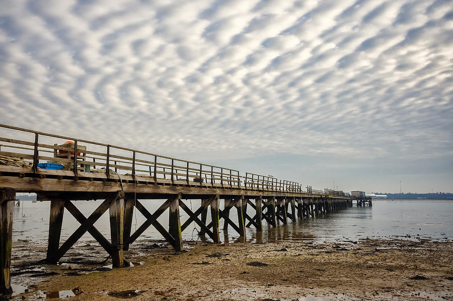 Bay Photograph - Shotley Coast by Svetlana Sewell