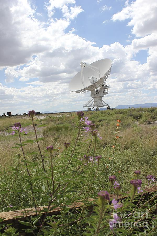 Vla Photograph - Shout Out To The Universe by Stephanie Woerndle