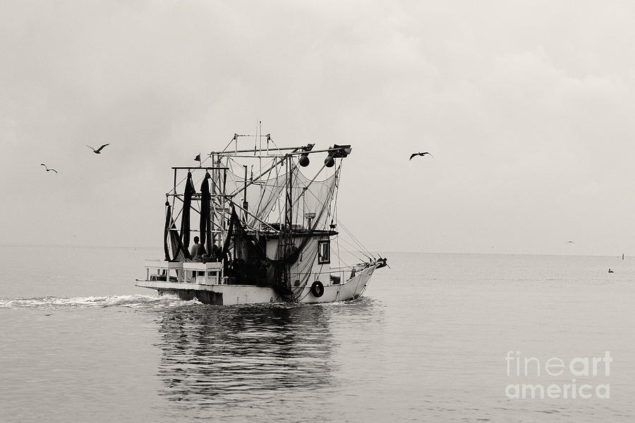 Shrimp Boat Photograph - Show Down by Russell Christie