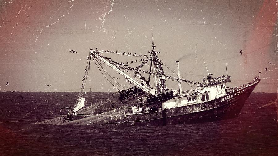 Shrimp Boat Photograph - Shrimping In The Harbor by Robert Bascelli
