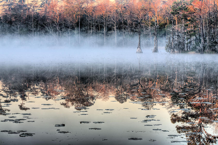 Southern Photograph - Shrouded  by JC Findley