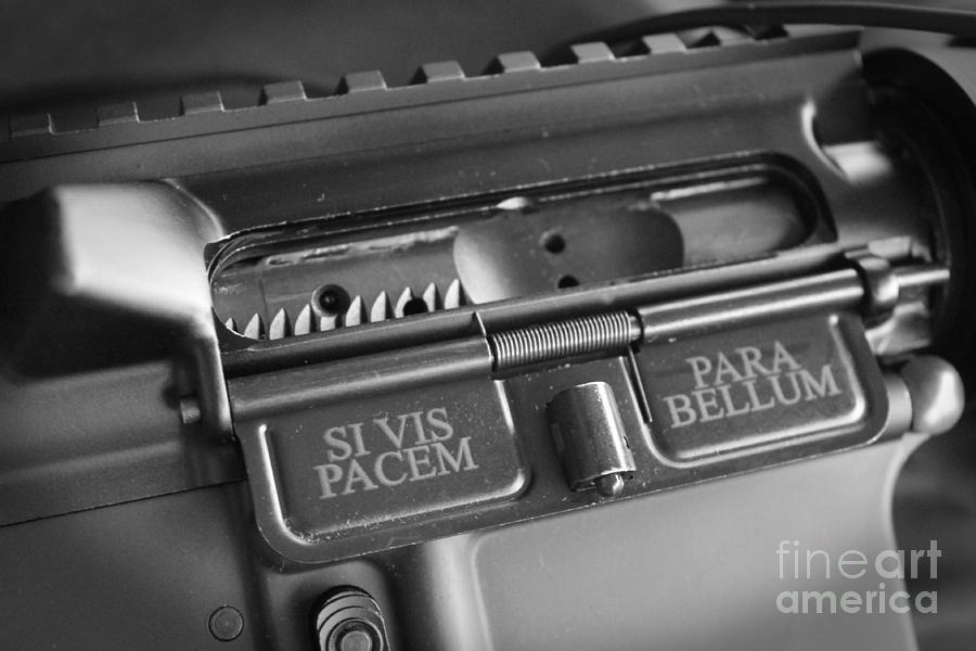 Rifles Photograph - Si Vis Pacem Para Bellum   by Lauren Blazer
