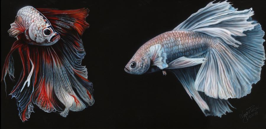 Siamese Fighting Fish Painting By Wayne Pruse