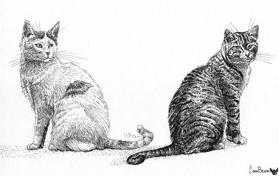 Sibling Drawing - Siblings by Cara Bevan