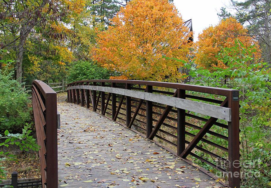 Side Cut Park Bridge Photograph